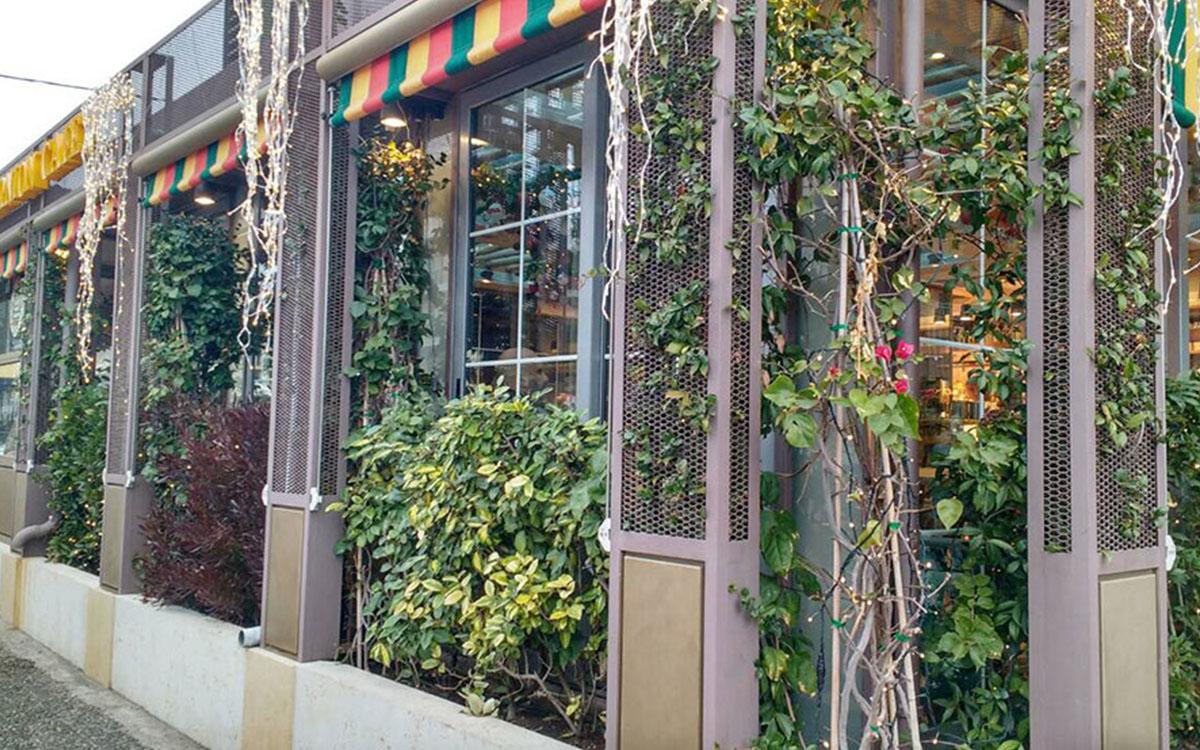 Ανακαίνιση καταστήματος με φυτά
